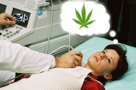 """STUDY: Utah's Epileptics Now """"Hella Chilled Out"""""""