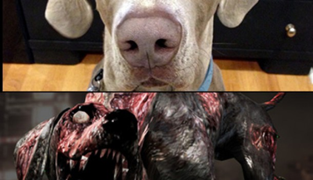 """""""Dog Had It Coming:"""" SLC Cop and Novice Resident Evil Player Finally Exacts Revenge"""
