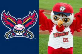 """Actually, Some of Our Best Players Are Colored,"" Respond Orem Owlz"